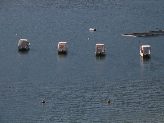 2.4. / Peter, Corona - Abstand auch im Wasser!