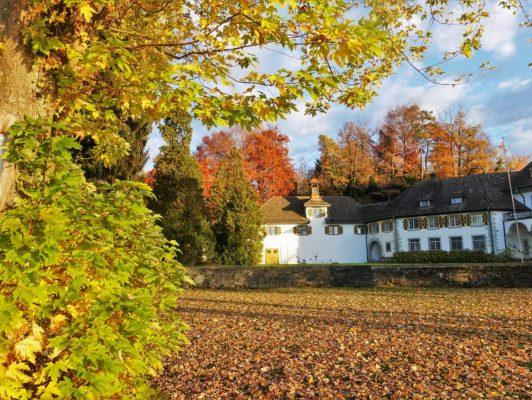 17.10. Wisy / Schloss Halbinsel Au
