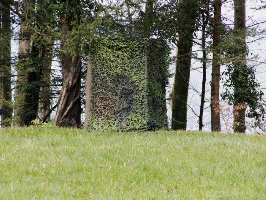 26.3. / Rolf, sein Tarnzelt für die Vogelfotografie