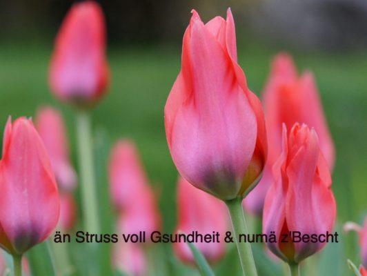 8.4. / APVM wünscht Dir HAPPY BIRTHDAY, lieber Arno